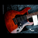 "【SOLD】FREEDOM CUSTOM GUITAR RESEARCH Hydra 22F  5A Flame Maple Top ""YBC"""
