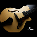 "【SOLD】Nishgaki Guitars Arcus Style-N  ""Kiso Hinoki & Flame Maple"""