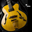 "【SOLD】Ibanez  PM2 ""Antique Amber"""