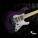 SCHECTER SD-II-24-AS PVR/M
